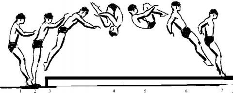 Saltofigur-480x192