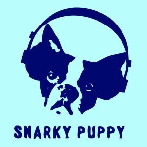 snarky-puppy